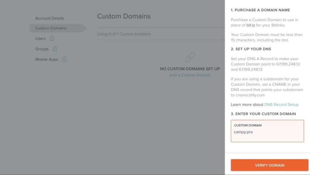 Screenshot — Bitly Add Domain, Custom Domain Properties