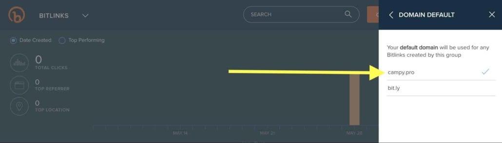 Screenshot — Bitly Domain Default Selector